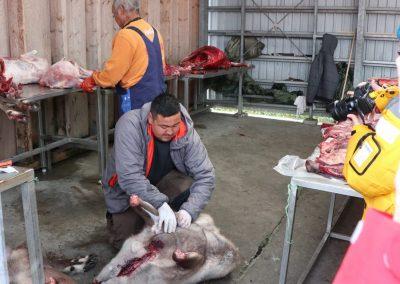 Nuuk Meatshop
