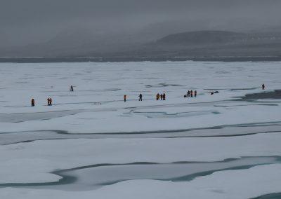walk on sea ice